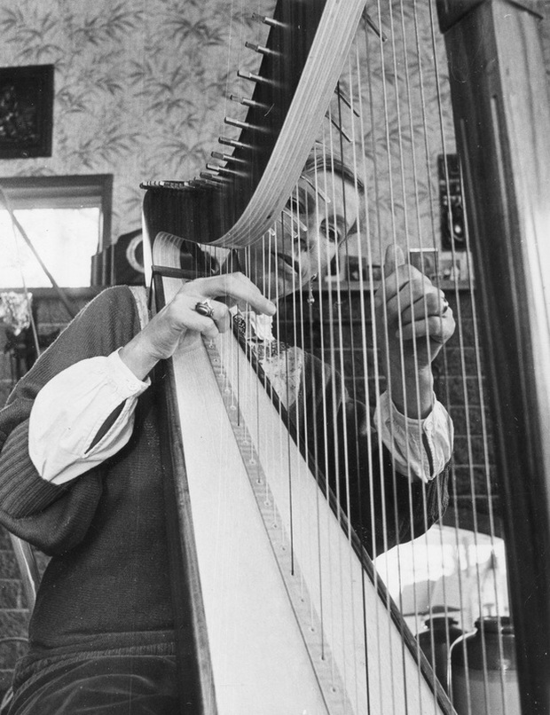 celtic harp for weddings and special occasions welcome